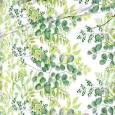 Tkanina bawełniana wzór liście akacji na białym tle